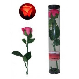 Rose D'lite Ultra Brillante