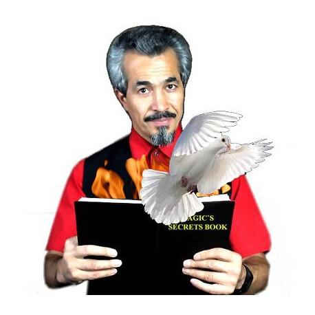 Dove and Fire Book de Tora Magic