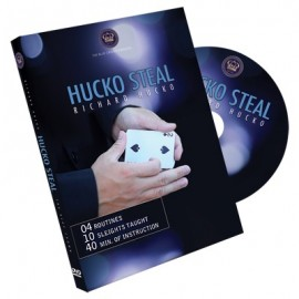 DVD Hucko Steal