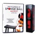 DVD Encyclopedia of Sponge Balls