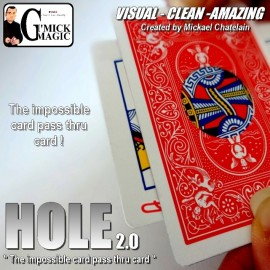 Hole 2.0 (DVD inclus)