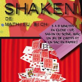 Shaken de Mathieu Bich