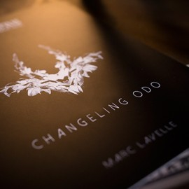 Changeling ODO de Marc Lavelle et Titanas