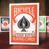 Bicycle dos Orange
