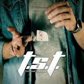 T.S.T. (Torn Steal Transform)