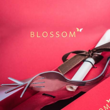 DVD Alchemist: Blossom de Will Tsai