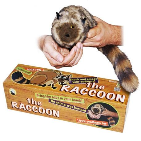 Raccoon (100% synthétique)