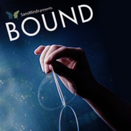 DVD Bound de Will Tsai