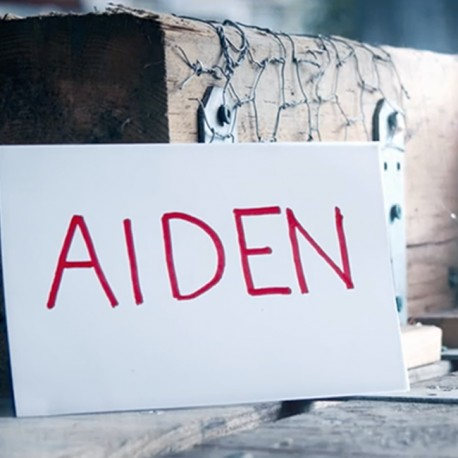 Aiden (DVD et Gimmicks)