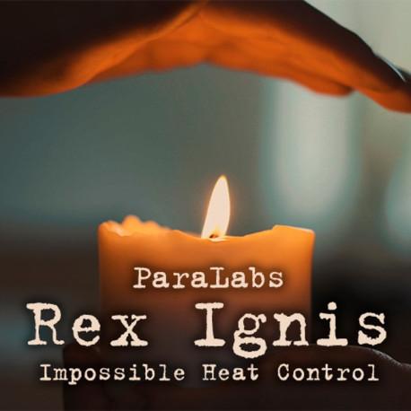 Rex Ignis 2.0