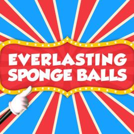 Everlasting Sponge Balls