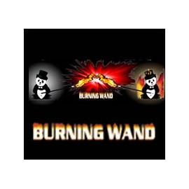 burning-wand-baguette-flash-x8