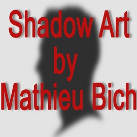 Shadow Art (Batman)